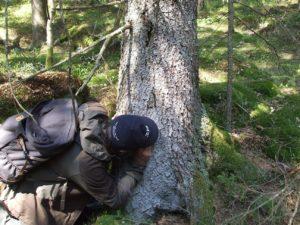Kroppefjäll gammelgranslav vandrings och fältstudiegruppen Vänersborg