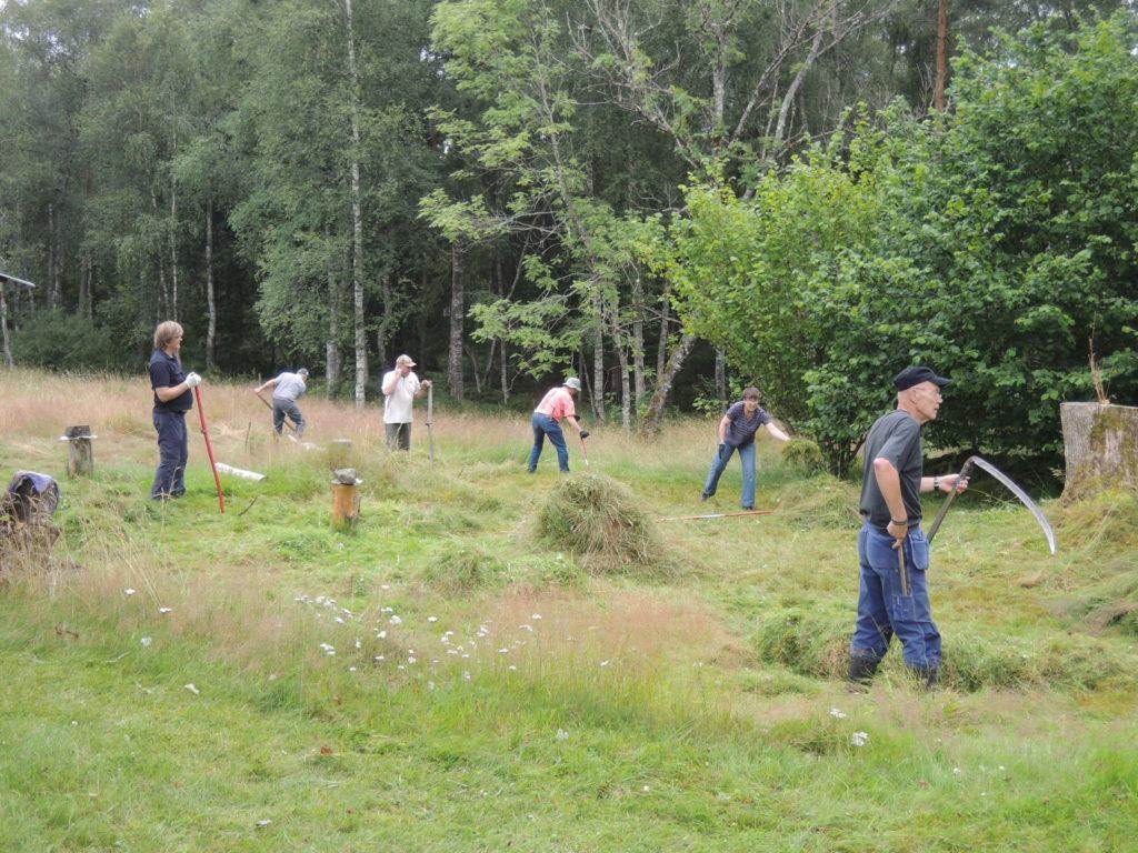 Slåtter, Grinnsjö naturreservat 2015 Hunneberg Vänersborg